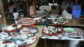 On a market at Khao Lak. Food In a market at Khao Lak in Thailand Royalty Free Stock Photography