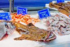 Market in La Rochelle Royalty Free Stock Photos