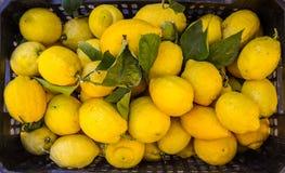 Market Lemons Royalty Free Stock Photo