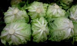 Market: Lettuce Stock Photos