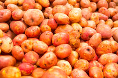 Market potatoes Royalty Free Stock Photos