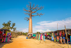 Market at the road to Baobab avenue Stock Photo