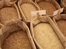 Market scenery with rye and wheat Stock Images