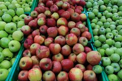 Market shelves with green and red ripe apples close up. Market shelves with green and red ripe apples. Autumn harvest. Fresh fruits Royalty Free Stock Image