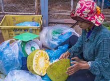 Market in Siem Reap Cambodia. SIEM REAP , CAMBODIA - OCT 18 : Cambodian woman selling Jackfruit in a market in Siem Reap Cambodia on October 18 2017. Agriculture Royalty Free Stock Photos