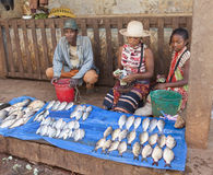 Market stall with fish in Africa Royalty Free Stock Images