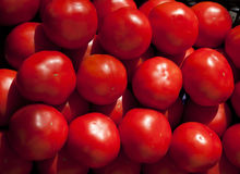 Market stall tomatoes Stock Photography