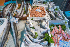 Market stand with fish and seafood. Seen in Palermo, Sicily royalty free stock photo