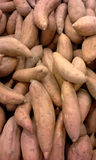 Market: Sweet Potatoes Royalty Free Stock Photos