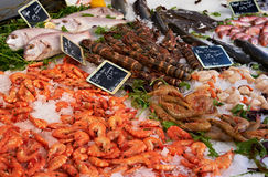 Market table with fish anf shrimps Royalty Free Stock Photos