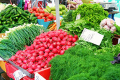 Market table with fresh vegetables from farmers Stock Photography