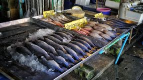 Market in thailand with fishes Stock Photos