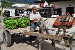 Market in Timana - Colombia Stock Image