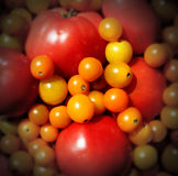 Market Tomatoes Stock Photo