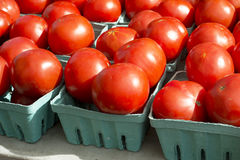 Market Tomatoes Royalty Free Stock Photo