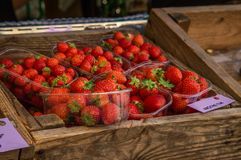 Market, trade in fresh products. Wooden box with strawberries sorted by trays. royalty free stock photo