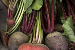 Market vegetables Royalty Free Stock Photography