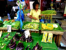 Market vendor selling vegetables in a market in philippines Royalty Free Stock Photos
