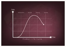 Marketing Concept of Product Life Cycle on Chalkboard Stock Photo