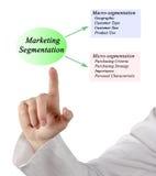 Marketing Segmentation. Presenting Diagram of Marketing Segmentation stock image