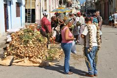 Marketplace in Cuba Royalty Free Stock Images