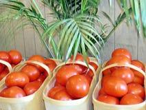 Markham tomatoes in baskets 2016 Stock Photo