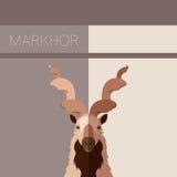 Markhor flat postcard Stock Photo