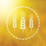 Markieren Sie Getreide Stockbild