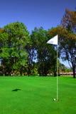Markierungsfahne auf Golfplatz Stockfotos