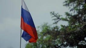 Markierungsfahne der Russischen Föderation Fokus auf dem Objektiv stock footage