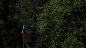Markierungsfahne der Russischen Föderation Fokus auf dem Objektiv stock video