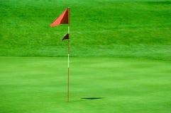 Markierungsfahne für Golf lizenzfreie stockbilder