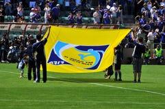 Markierungsfahne FIFA-2010 Lizenzfreies Stockbild