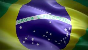 Markierungsfahne von Brasilien stock video