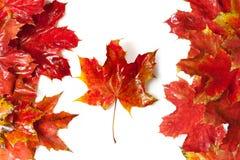 Markierungsfahne von Kanada Lizenzfreies Stockfoto