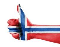 Markierungsfahne von Norwegen Lizenzfreies Stockfoto