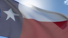 Markierungsfahne von Texas lizenzfreie abbildung