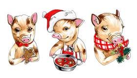 Markierungsillustrationssammlung Minischweine mit Dekor, Getränken und Nahrung des neuen Jahres vektor abbildung