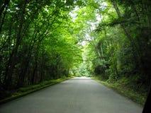Markisväg Royaltyfria Bilder