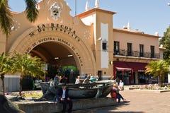 Marknad av Santa Cruz de Tenerife Fotografering för Bildbyråer
