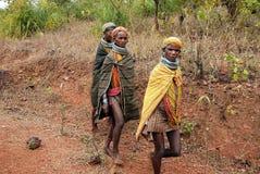 marknad för damtoalett för ankudelibondas gående till stam- royaltyfria bilder