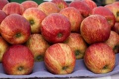 Marknad för gata för friskhet för äpplefruktmat röd Royaltyfria Bilder