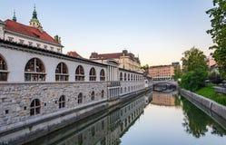 Marknad för Ljubljana ` s på banken av Ljubljanica Royaltyfri Bild