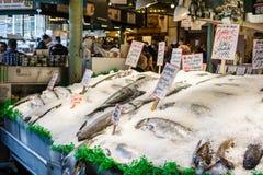 Marknad för pikställefisk Arkivfoto