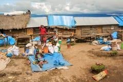 Marknad i byn i Tanzania Royaltyfria Foton