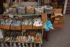Marknad på gatan Fisk och ägg manila philippines Royaltyfria Foton