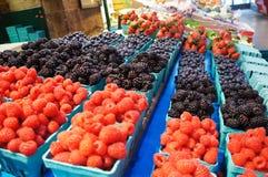 Marknadsfrukter Fotografering för Bildbyråer