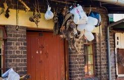 Marknadsplats för traditionell medicin i Johannesburg CBD fotografering för bildbyråer