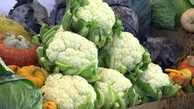 Marknadsställe som är till salu av den nya blomkålen, röd och grön kål och pumpor, högkvalitativa naturliga grönsaker stock video