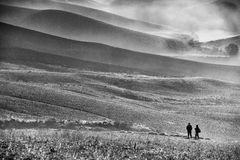 Markotny monochromu krajobraz Obraz Stock